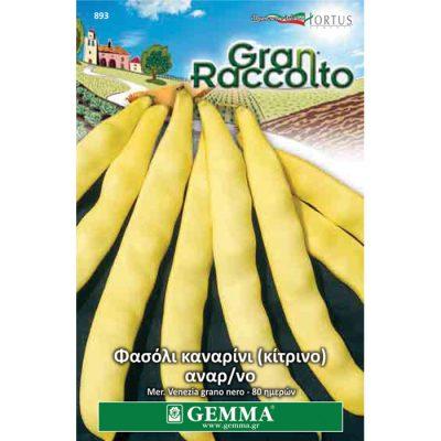 "FAG 893 - Φασόλι καναρίνι αναρριχώμενο - Phaseolus vulgaris ""Meraviglia di Venezia"""