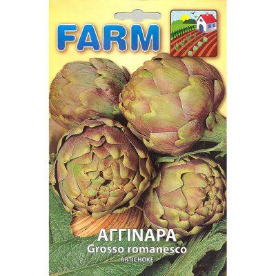 FARM 109 - ΑΓΚΙΝΑΡΑ - Cynara scolymus