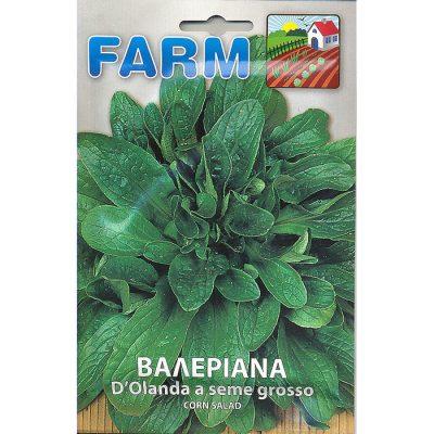 FARM 503 - Valerianella locusta