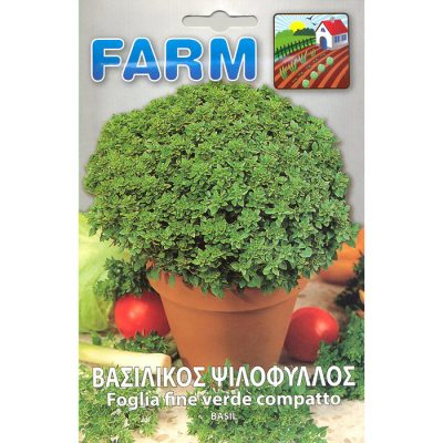 FARM 504 - Ocimum basilicum
