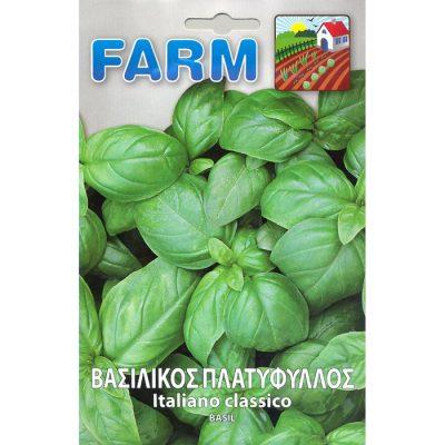 FARM 505 - Ocimum basilicum