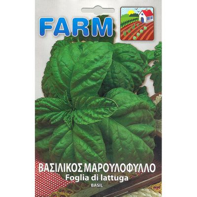 FARM 506 - ΒΑΣΙΛΙΚΟΣ ΙΤΑΛΙΚΟΣ ΜΑΡΟΥΛΑΤΟΣ - Ocimum basilicum