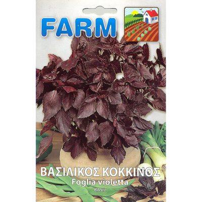 FARM 507 - Ocimum basilicum