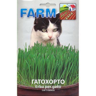 FARM 508 – Cat Grass - Avena Sativa