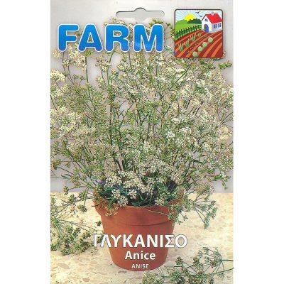 FARM 509 – Pimpinella anisum
