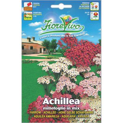 A024 – Achillea filipendulina