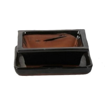 A3150004 Bonsai ceramic set (pot – plate) Choukaku (Ractangle)