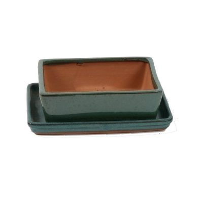 A3200002 Bonsai ceramic set (pot – plate) Choukaku (Ractangle)