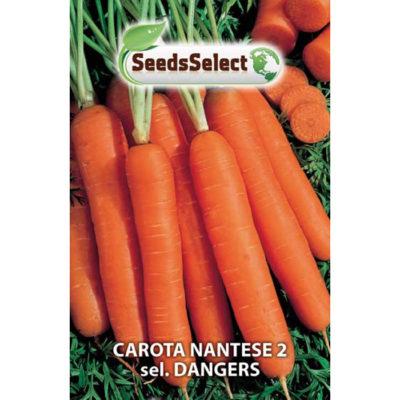 CT02 - Daucus carota