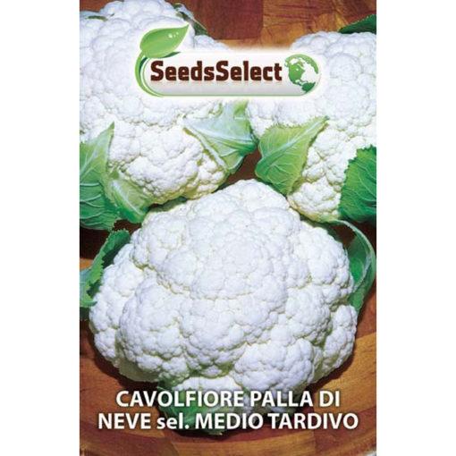 CVF02 - ΚΟΥΝΟΥΠΙΔΙ ΟΨΙΜΟ – Brassica oleracea var. botrytis