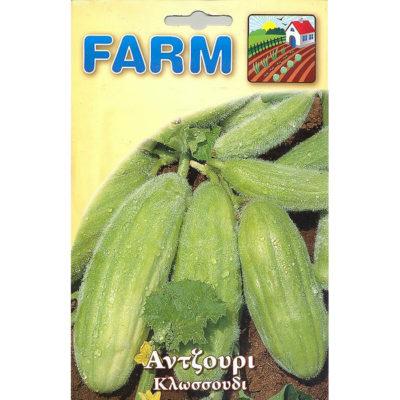 FARM 107 - ΑΝΤΖΟΥΡΙ ΞΥΛΑΓΓΟΥΡΟ - ΚΛΩΣΣΑΚΙ – Cucumis melo var. adzhur