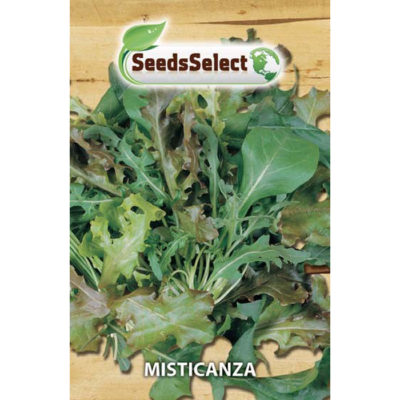MIS01 - ΣΑΛΑΤΑ ΜΙΣΤΙΚΑΝΖΑ ΜΙΓΜΑ – Salad mixed