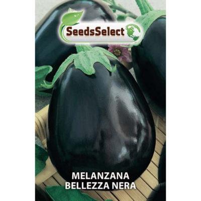MLZ01 - Solanum melongena