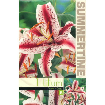 9248 Lilium – Λίλιουμ Dizzy