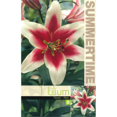 9268 Lilium – Λίλιουμ Altari