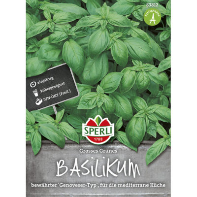 83812 – Ocimun basilicum
