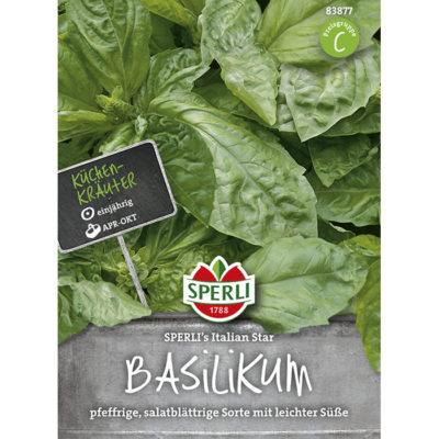 83877 – Βασιλικός μαρουλάτος – Ocimun basilicum