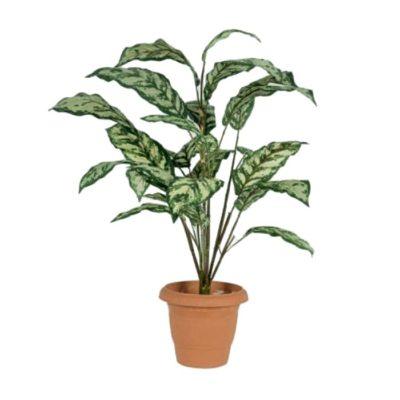Τεχνητό φυτό – Αγλαόνημα 310650