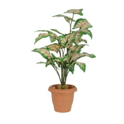 Artificial plant – Caladium 310650