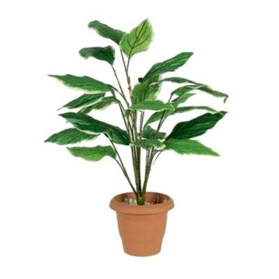Artificial plant – Hosta 310650