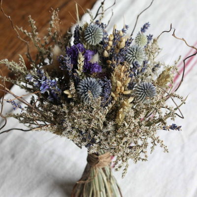 Dried and Everlasting Flowers seeds