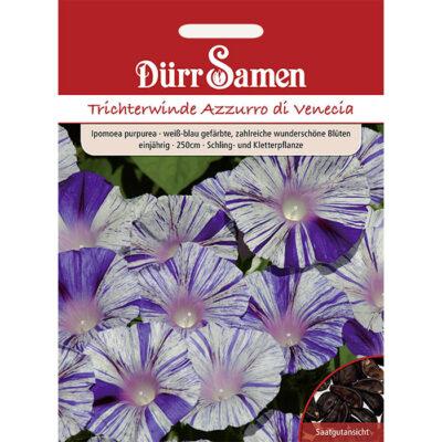 DS1148 - Ιπόμεα λευκή μπλε - Ipomoea purpurea