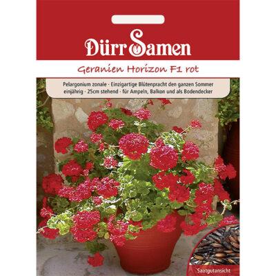 DS1159 - Γεράνι μολόχα κόκκινο - Pelargonium zonale «Horizon F1 red»