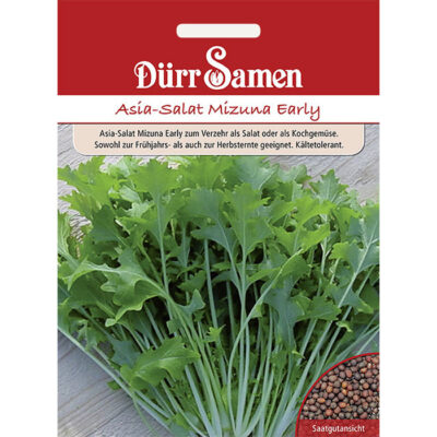 DS1896 - Μιζούνα Ιαπωνική μουστάρδα - Brassica oleracea Mizuna