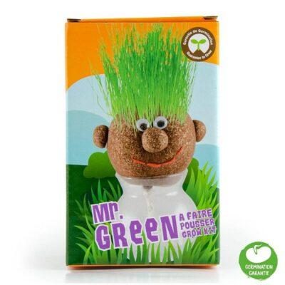 """Ο """"Κύριος Πράσινος"""" (Mr Green)"""