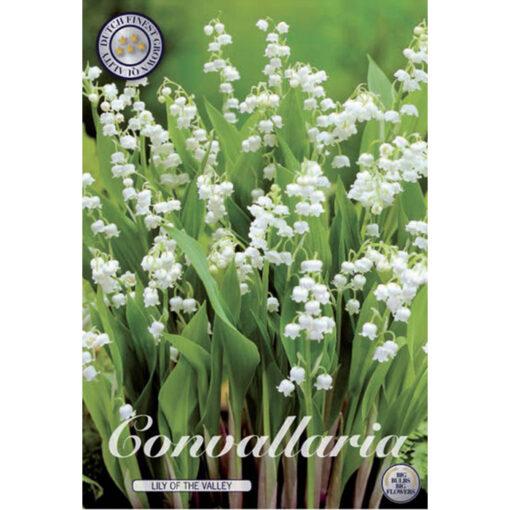 01970 Convallaria – Κονβαλάρια – Μιγκέ majalis