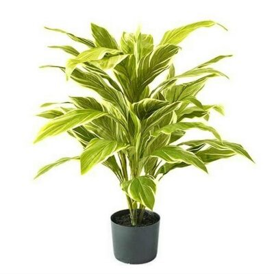 Artificial plant – Cordyline yellow x 48 leaves 31650