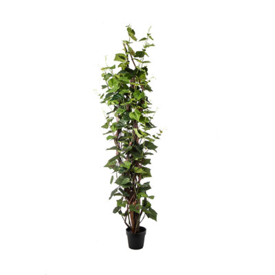Artificial plant – Vine with wood trunk Α22174