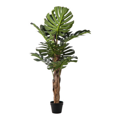 Artificial plant – Monstera with stick Α22198