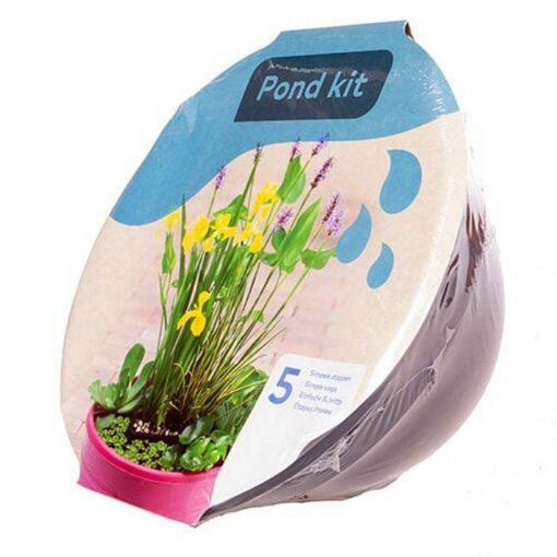 Y 4020905 Pond Kit (Μίνι λίμνη σύνθεση υδροχαρών φυτών)