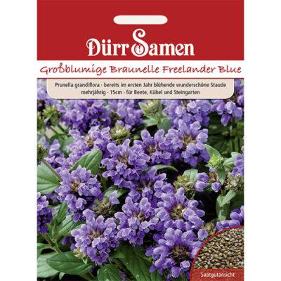 DS1083 – Προυνέλα – Prunella grandiflora