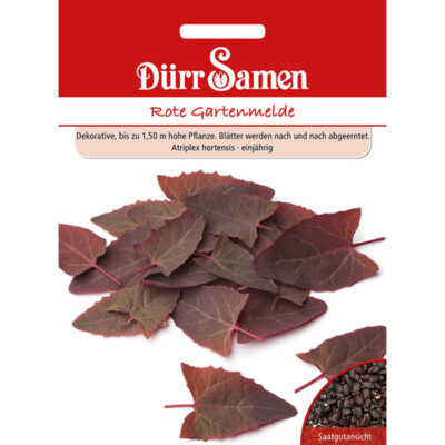 DS4365 – Κόκκινο αγριοσπανάκι – Atriplex hortensis
